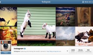 Instagram geht gegen Spam-Konten vor