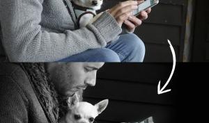 Wie Sie Bildern mehr Ausdruck verleihen