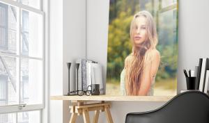 Sechs Acrylglas-Wandbilder im Test