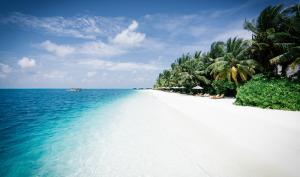 #alphaddicted reist weiter auf die Malediven