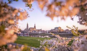 Die volle Pracht des Frühlings: Die schönsten FotoEASY-Leserbilder