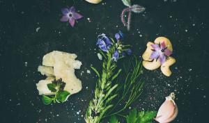 Foto-Basics: zauberhaftes Stillleben