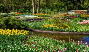 Foto-Reiseziele: Die 10 schönsten Gärten Europas