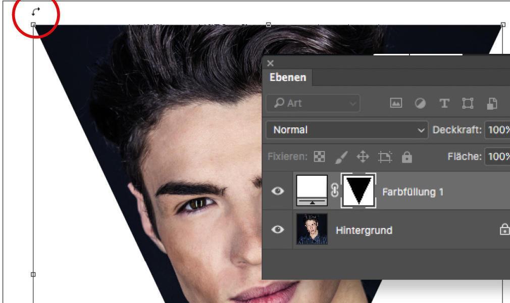 Adobe Photoshop kaufen   Fotos, Bilder und Designs …
