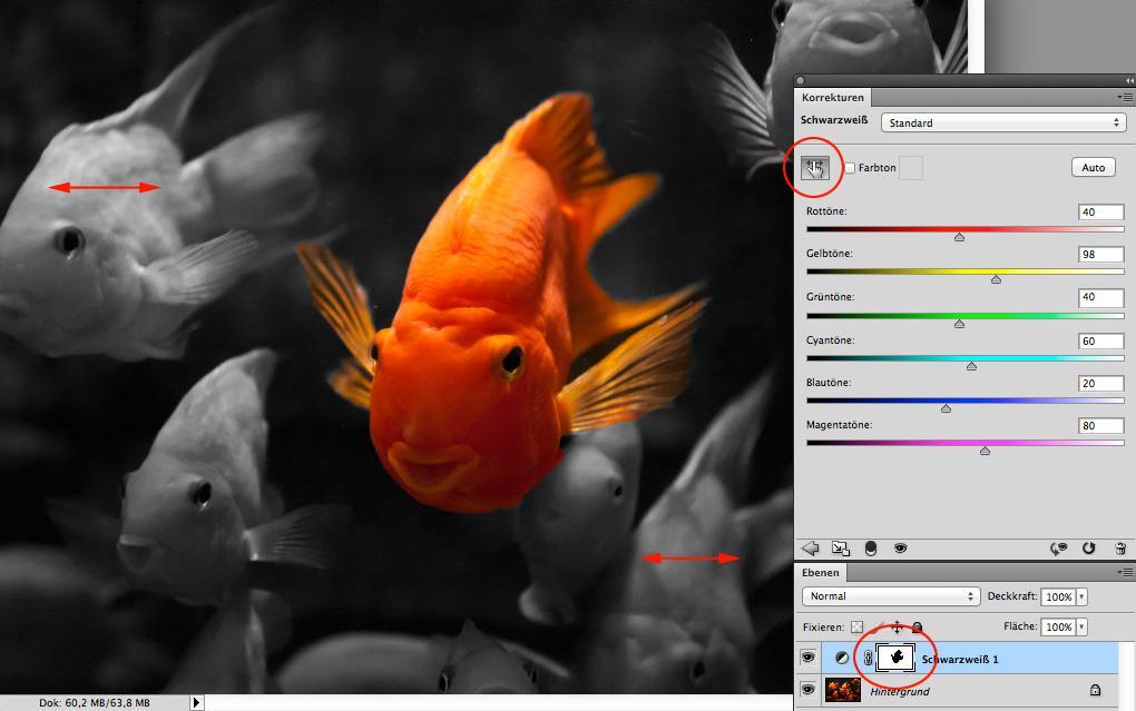 Photoshop Teilkolorieren Ganz Einfach Digitalphoto
