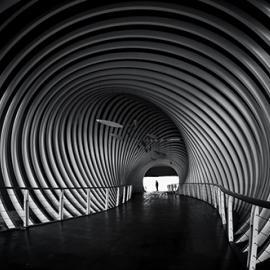 Fotograf des Jahres 2015 Strukturen