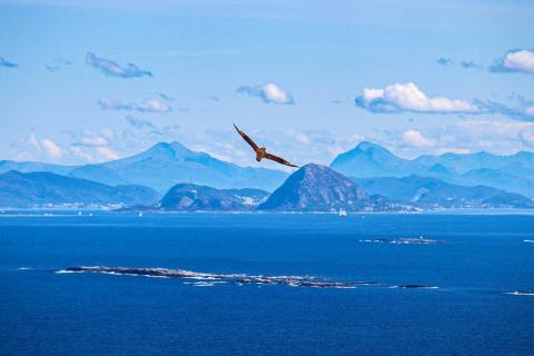 Norwegen Vogelinsel Runde