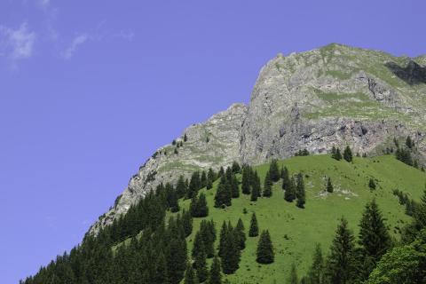 Auf zum Gipfel