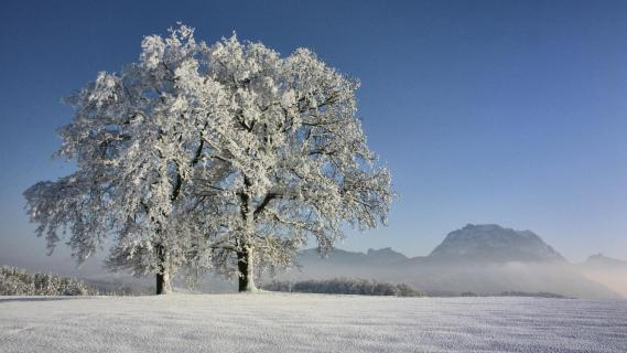 Traunstein im Schnee