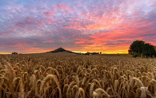 Desenberg Sonnenuntergang
