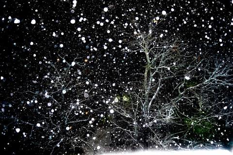 Schneeflocken tanzen in der Nacht