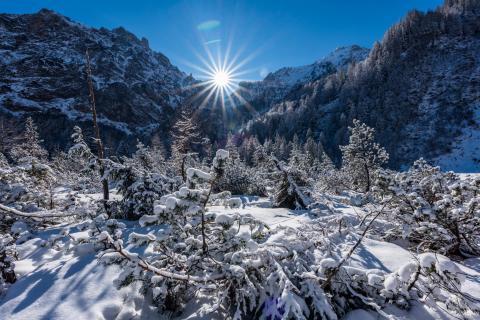 A mountain winter wonderland
