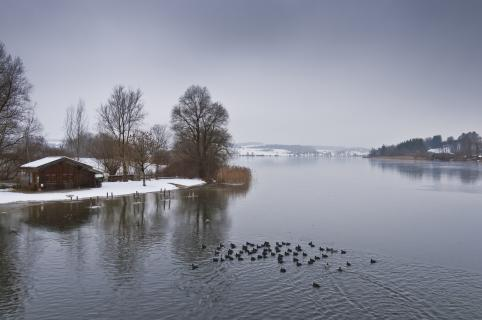 Winter am Tachingersee