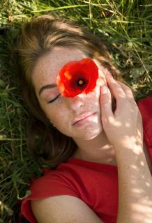 red poppy portrait