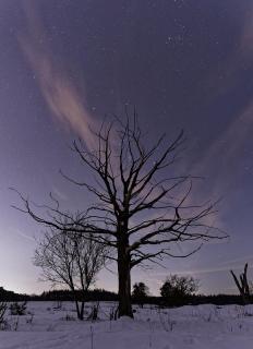 Sternennacht auf dem Hainberg