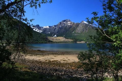 Am Svartisen-Gletscher