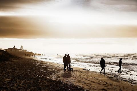 Goldene Abendstimmung am Nordseestrand