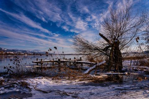 Fischersteg Pfäffikersee im Winter