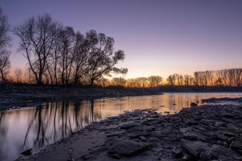 Rheingrund bei Sonnenaufgang