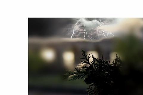 Zweig Spinnennetz Gewitter