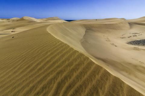 Wie die Wüste