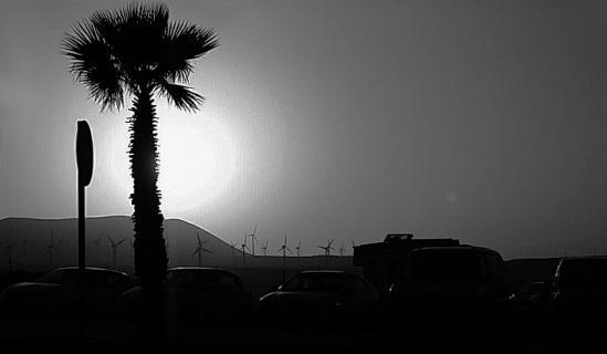 Tenerife in the backlight