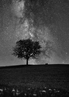 Zu zweit unter Sternen