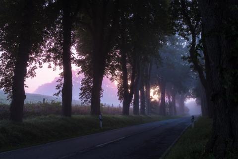 Weg in die Morgenröte