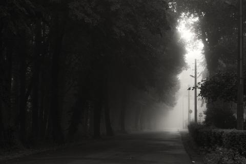 Nebelstraße