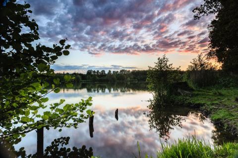 Abendstimmung am Rubbenbruchsee