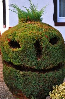 Halloween in Nachbars Garten