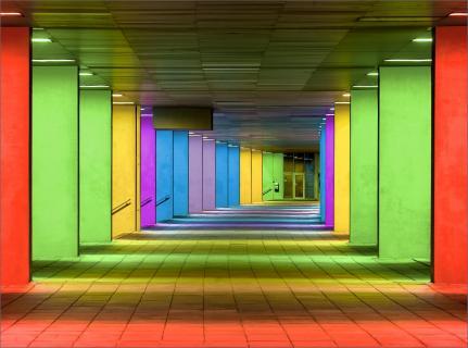 Das Neue Institut in Rotterdam