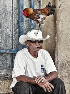 Kubaner mit Hahn