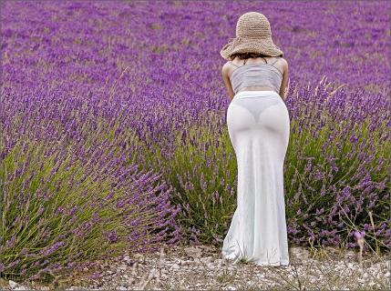 ich liebe Lavendel