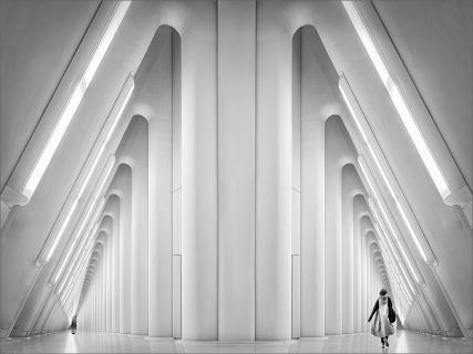 Hommage to Calatrava