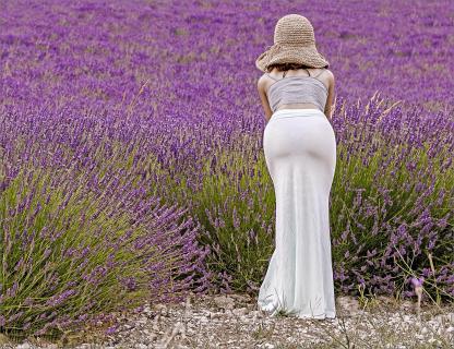 Ich liebe Lavendel...