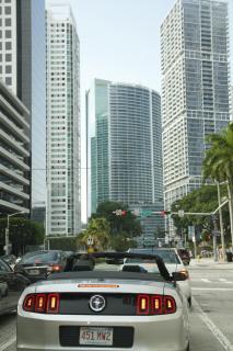 Miami Mustang