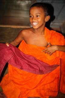 Mönchsjunge