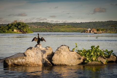 Trocknen am Nil