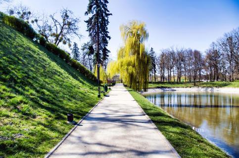 Spazierweg im Park