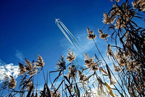 Flugzeug über naturschutzgebiet