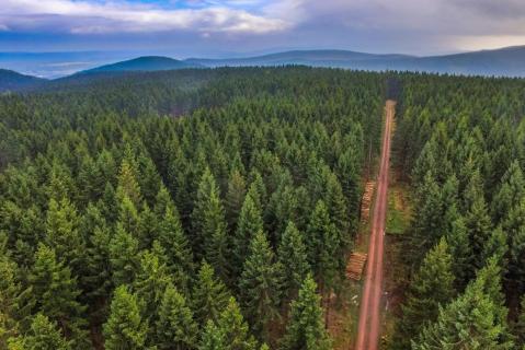 Drohnenflug über den Thüringer Wald