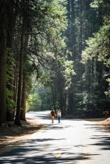 Spaziergang im Yosemite