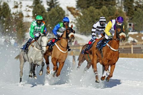 Pferderennen im_Schnee