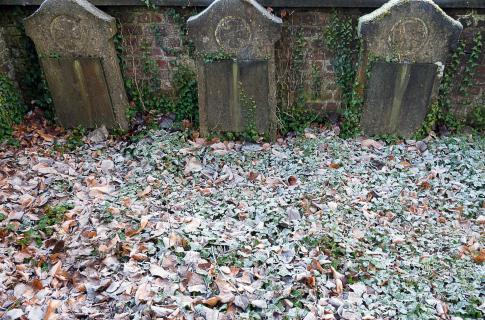 Frost auf dem Friedhof