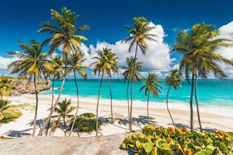 Karibik Barbados