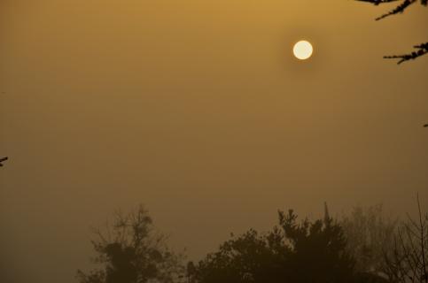 Herbstsonne am Morgen