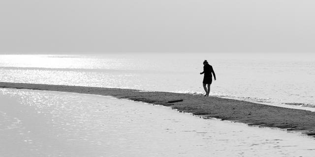 Zwischen den Meeren