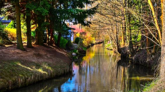 Burg im Spreewald - Fließe im Frühling