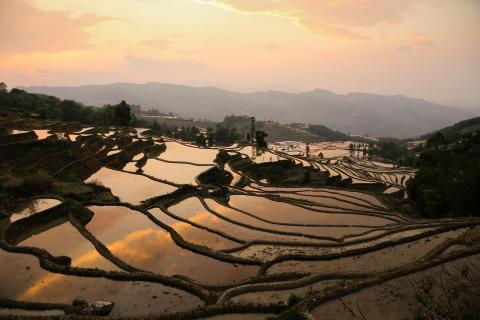 Abends bei den Reisterrassen